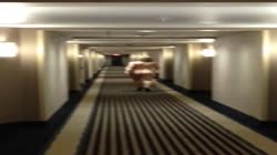 Hotel corridor walk
